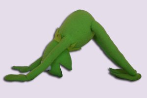 Kermit the Froy