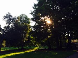 Langford Park 2014